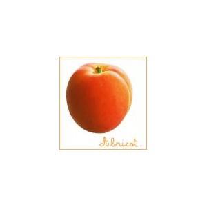 abricot france gard
