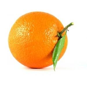 Orange Gamin