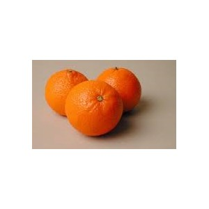 clementine jaffa israel