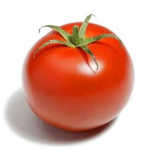 Tomate espagne