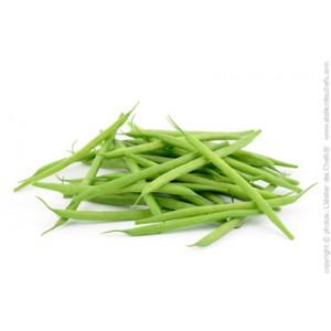 Haricot Vert maroc